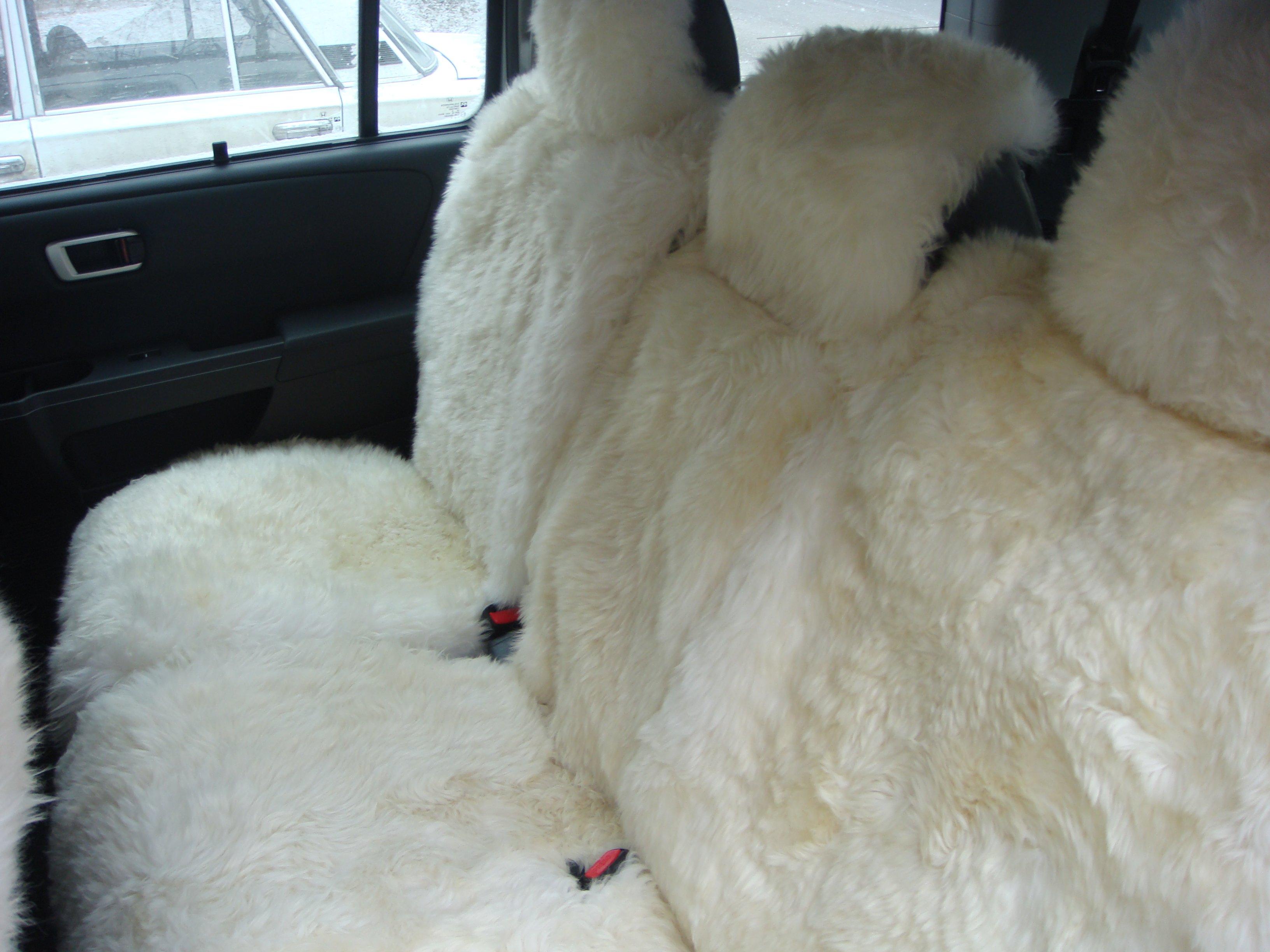 салон автомобиля из овчины