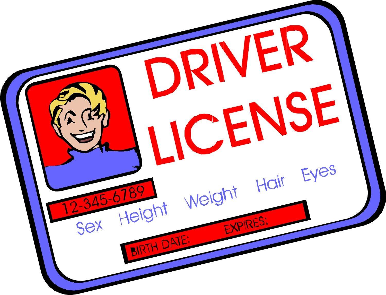Как получить водительские права в США