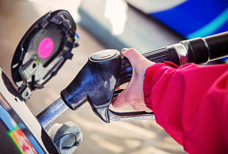 Бензин своими руками правда или вымысел . Политический класс