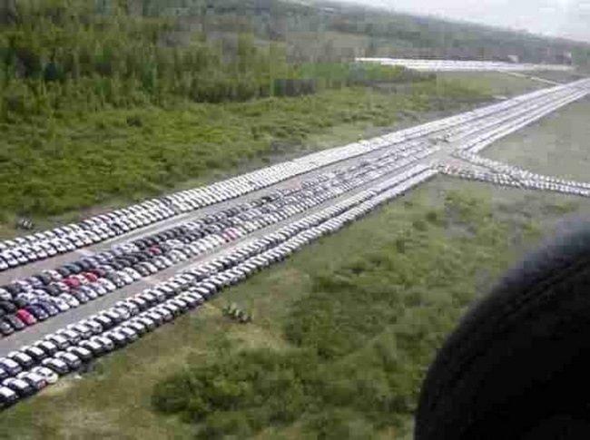 Кладбище новых автомобилей в Санкт-Петербурге