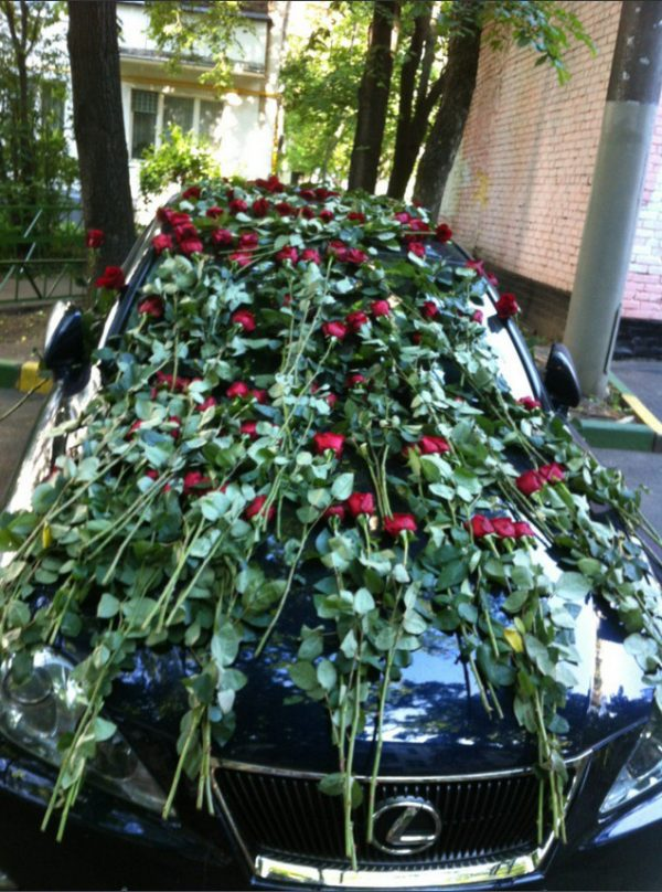 Машины Натальи Рудовой